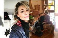 """Małgorzata Majdan kupiła nowego psa. Fani: """"To jest szczeniak?!"""" Rzeczywiście DUŻY"""