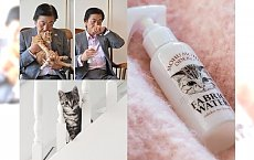 Perfumy o zapachu kota! Szaleństwo?!