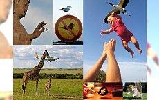 Te zdjęcia to prawdziwy hit Internetu! Odkryj 17 fotek zrobionych w idealnym momencie! WOW!