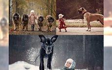 NIESAMOWITE ZDJĘCIA - malutkie dzieci i wielkie psy! Wyjątkowa miłość i potężne zaufanie