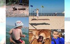 16 zdjęć, na które trzeba spojrzeć przynajmniej dwa razy, żeby je zrozumieć! Zdjęcia nr 2 i 7 wygrywają wszystko!