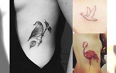 BIRD TATTOO: 50 najpiękniejszych pomysłów na tatuaże z ptakami