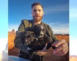 Znalazł na pustyni dwa małe, porzucone szczeniaki... Ich zdjęcia podbijają Instagram!