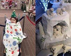 Jej pięcioletnia córeczka jest zbyt chora, żeby pojechać do Laponii, dlatego mama zbudowała jej Laponię w domu!