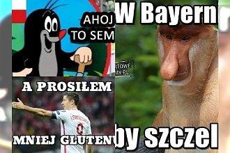 Memy po meczu Polska-Czechy! Dostało się Lewemu, Brzęczkowi i... krecikowi!