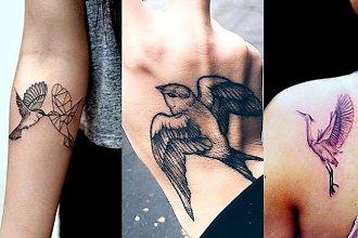Bird tattoos - 16 ślicznych i unikatowych wzorów dla kobiet