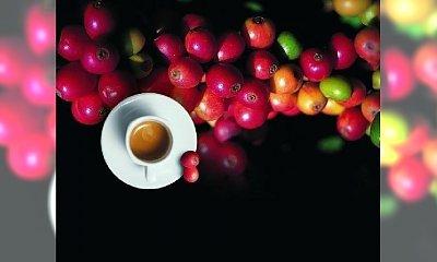Przepisy na domowe kosmetyki z kawy
