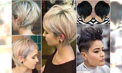 Krótkie fryzury w ciekawych kolorach - modne i kobiece! Macie ochotę na spektakularną zmianę?