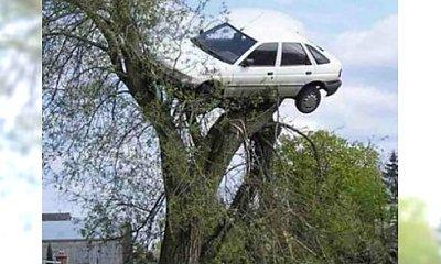 Nie jesteś mistrzem kierownicy?!  Koniecznie zobacz te zdjęcia! Przedstawiamy Wam najgorszych kierowców  świata
