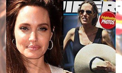 Ta okładka ZSZOKOWAŁA fanów Angeliny. Aktorka pojawiła się na festiwalu w Toronto. Jest aż tak źle?