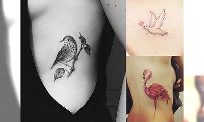 Tatuaże ptaki - 50 najpiękniejszych wzorów z sieci!