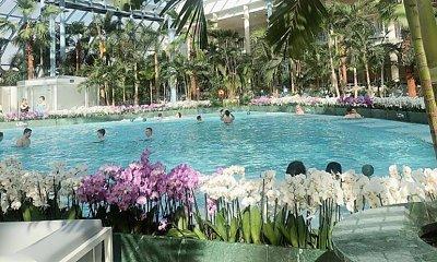 Jak naprawdę wygląda Suntago, największy aquapark w Europie? Opinie gości są przerażające