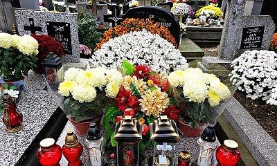 """Akcja """"Kup pan chryzantemę"""" w Warszawie. Możesz pomóc sprzedawcom kwiatów i zniczy!"""