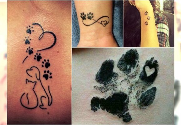 Tatuaż łapki Urocze Wzory Dla Kochających Psy I Koty