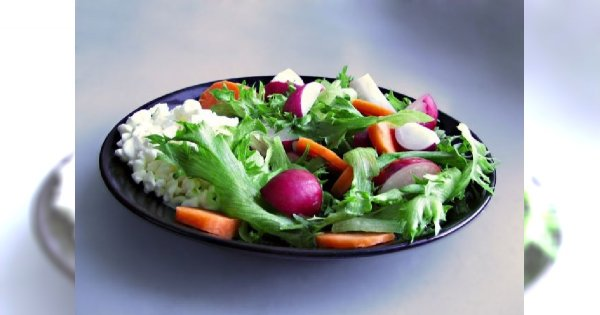 Dieta Ornisha