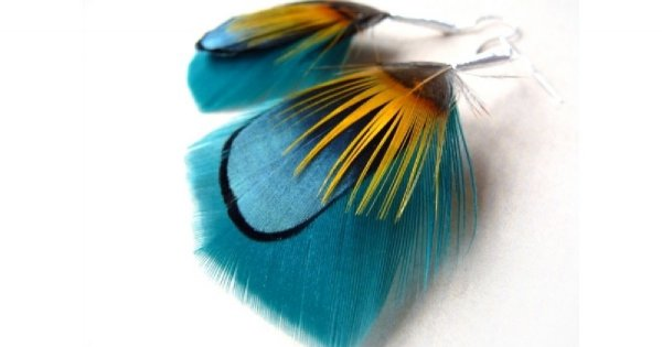 Bądź jak kolorowy ptak