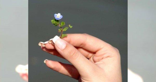 Jak prawidłowo piłować paznokcie?