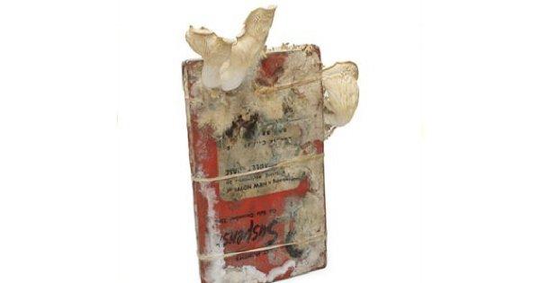 Jadalne grzyby z książki?!