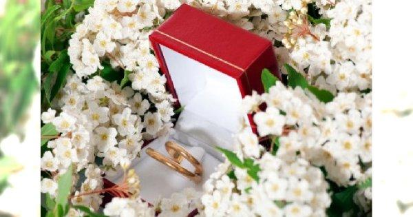 Jak wybrać obrączki ślubne?