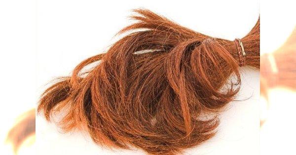 Jak szybko rosną włosy?