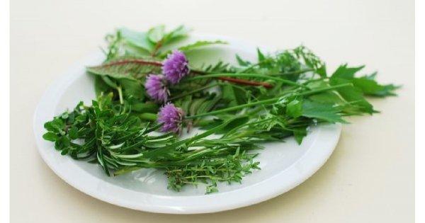 Jakie zioła pomogą na problemy z tłustą cerą?