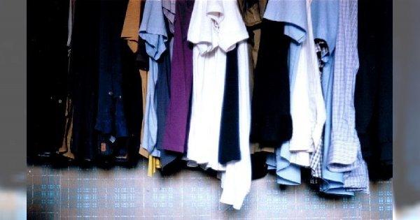 Jak pozbyć się moli z szafy?