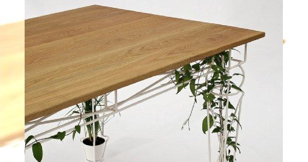 Ciekawy eko stół