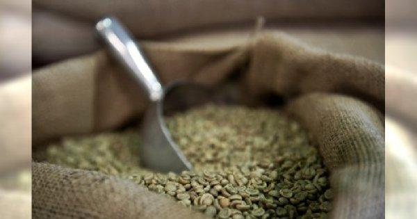 Zabieg dla ciała na bazie kawy