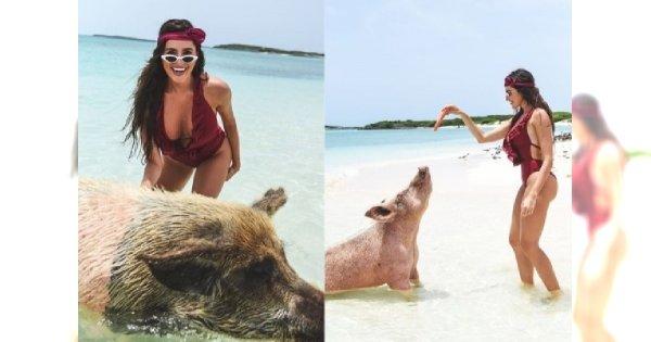Boska dziewczyna Krychowiaka szaleje ze świniami w oceanie [FOTO]
