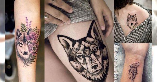 Tatuaż z motywem wilka - galeria tajemniczych i kobiecych pomysłów