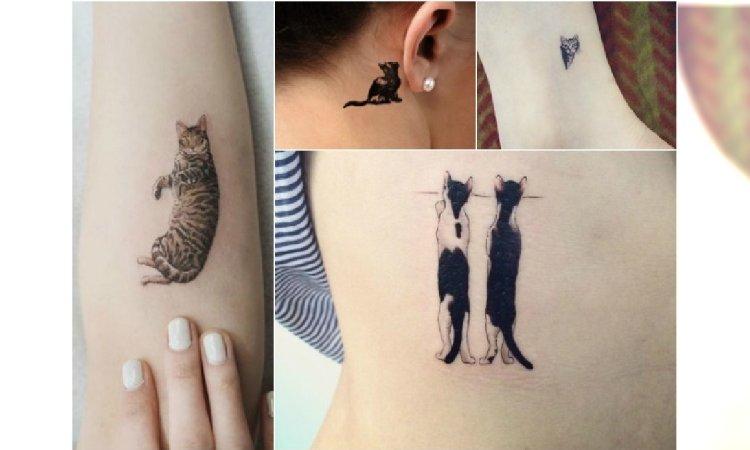 Mały Tatuaż Z Kotem Urocze I Zabawne Wzory Dla
