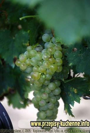 grapes-8-kopia