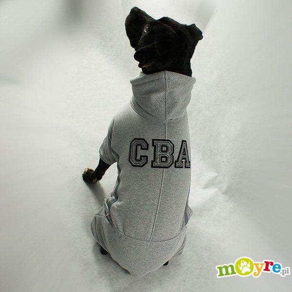 Moyre-bluza dla psa