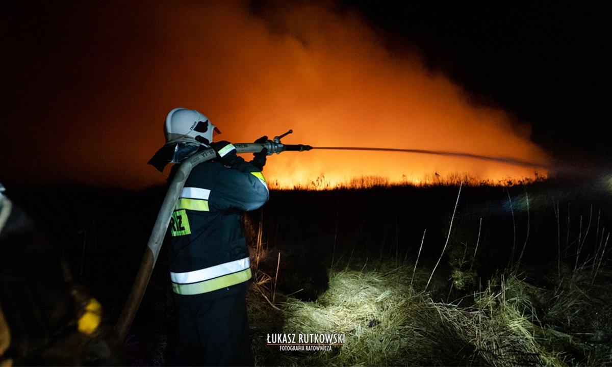 Od niedzieli trwają pożary w Biebrzańskim Parku Narodowym. Straty są ogromne! Sprawdź jak można pomóc