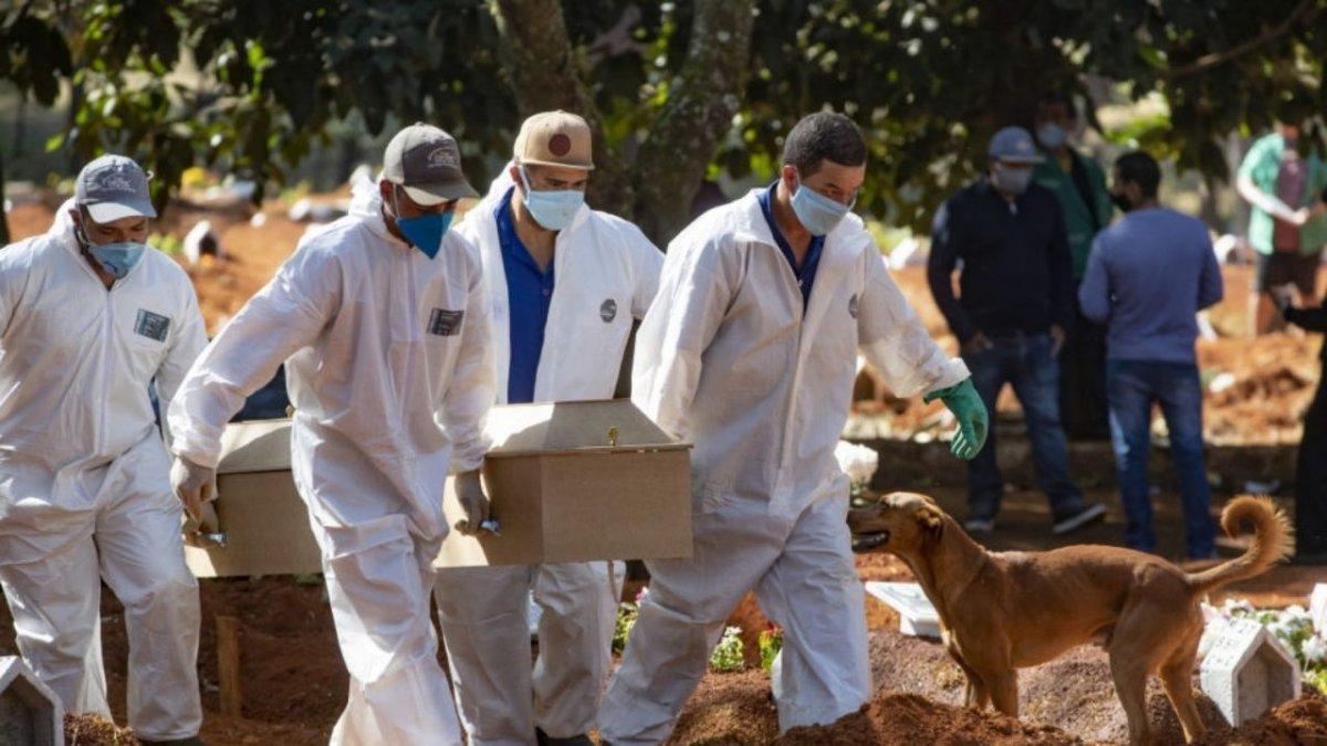 Pandemia: Katowicki sanepid już pyta o miejsca na zbiorowe mogiły. Czeka nas czarny scenariusz?