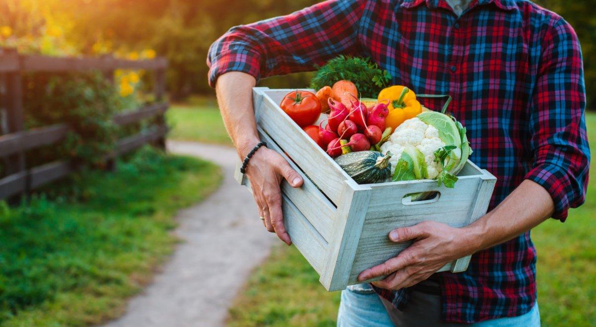 Żywność ekologiczna – czyli jaka?