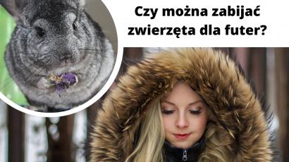Czy popierasz zakaz hodowli zwierząt futerkowych? Aktywista pokazał koszmar na fermie norek