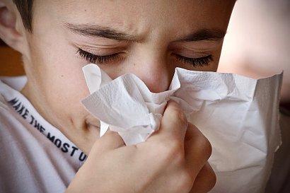 Katar, kichanie i ból gardła? Sprawdź naturalne sposoby na jesienno-zimowe przeziębienie