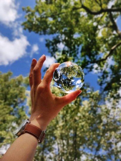 Żywność przyszłości będzie produkowana ekologicznie, a przy tym bogata w składniki odżywcze.