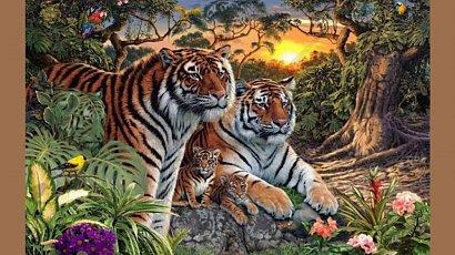 Ile tygrysów widzisz na obrazku? Nie każdy potrafi wskazać prawidłową odpowiedź!