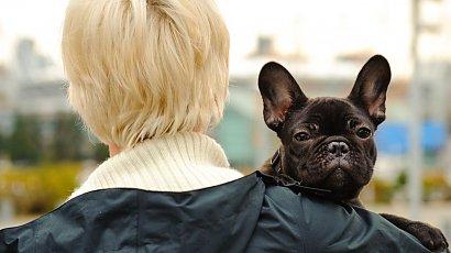 """""""Mój pies jest wege jak ja. Znajomi ze mnie szydzą, a mnie to wkurza. Gdzie tolerancja?!"""""""