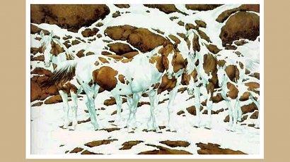 Ile koni dostrzegasz na obrazku? Ta zagadka sprawdzi Twoją spostrzegawczość! Podejmiesz wyzwanie?