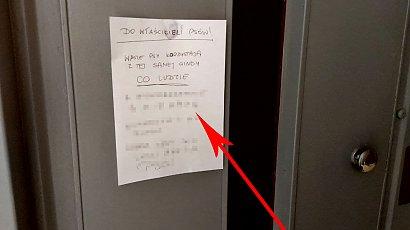 Psy nie powinny jeździć windą, bo śmierdzą?! Takie żądania ma mieszkaniec Łodzi. Absurdalne?