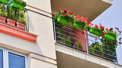 """""""Sąsiad zgłosił do wspólnoty, że kwiaty w moim ogrodzie... śmierdzą. Co za absurd!"""""""
