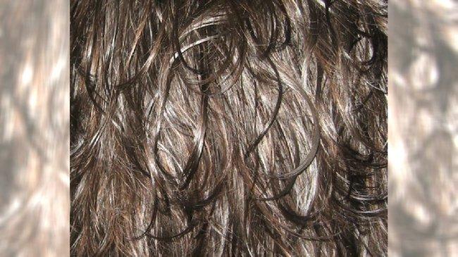 Gęste brązowe włosy