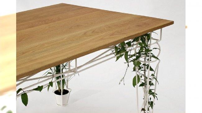 eko stół