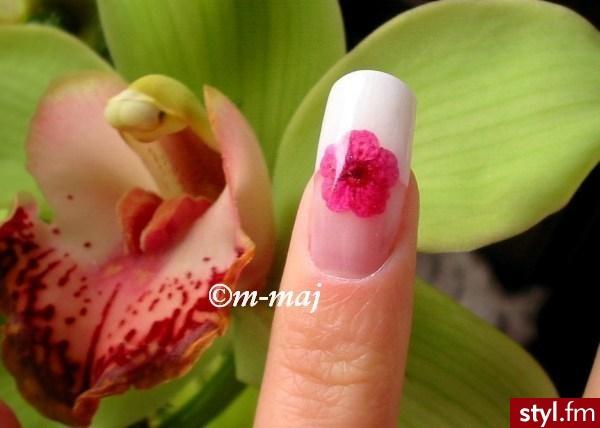 french i kwiatek - Paznokcie
