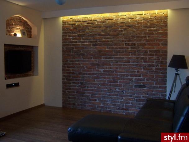 Jaką ścianę z cegły polecacie?  Pytania