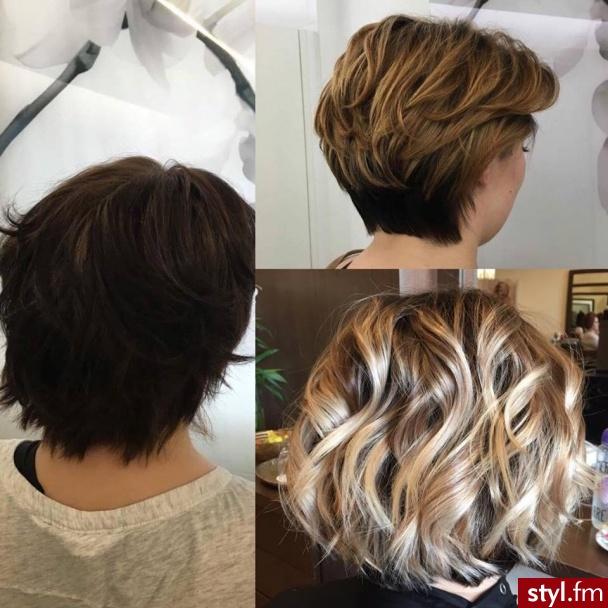 Kolor uzyskany podczas dwóch wizyt w trakcie dwóch miesięcy.Włosy na blond i troszkę dłuższe.  - Blond Rozpuszczone Kręcone Na co dzień Krótkie Fryzury